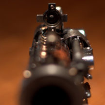 the-ambassador-rear-sight
