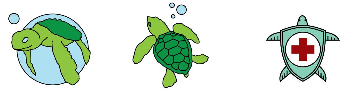 turtle-logo-concepts